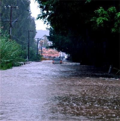 Narrabeen Creek at Macpherson St 1 400
