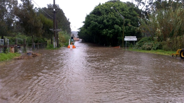 Narrabeen Creek at Mapherson St 750